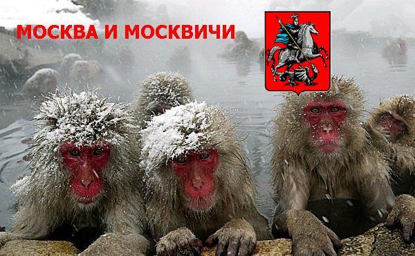 про Московские морозы прикол!